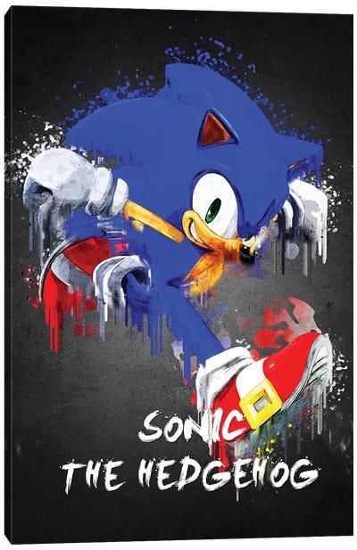 Sonic Canvas Art Print
