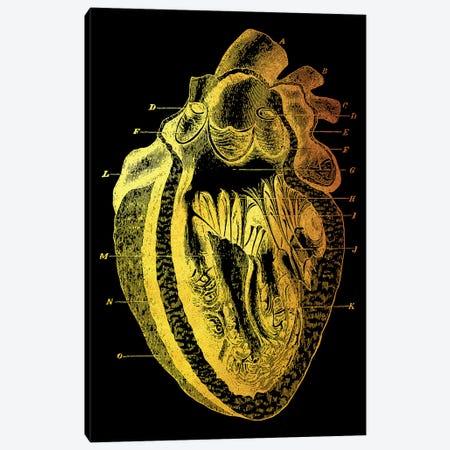 Heart I Canvas Print #GFN77} by Gab Fernando Canvas Art Print