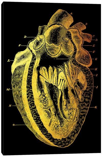 Heart I Canvas Art Print