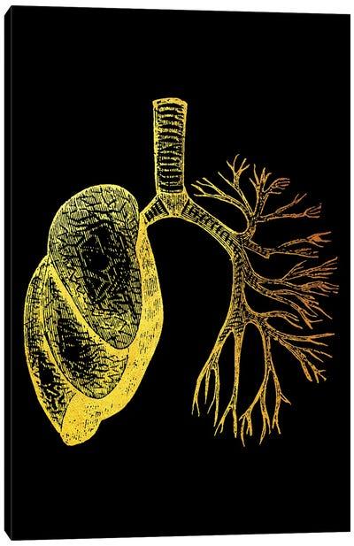 Lungs I Canvas Art Print