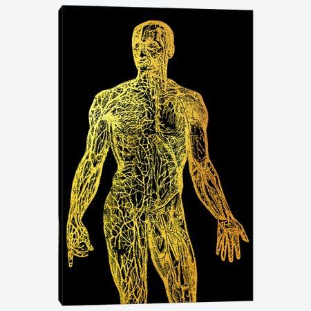 Back Nerves I Canvas Print #GFN90} by Gab Fernando Canvas Wall Art