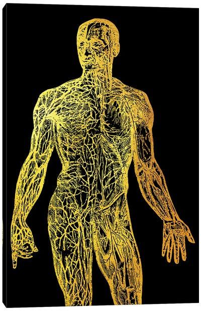 Back Nerves I Canvas Art Print