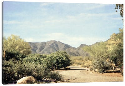 Desert Path Canvas Art Print