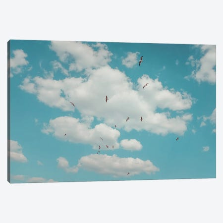 Happy Birds Canvas Print #GGV13} by A Carousel Wandering Canvas Print