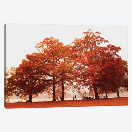 Autumn For Two Canvas Print #GGV32} by A Carousel Wandering Canvas Art Print