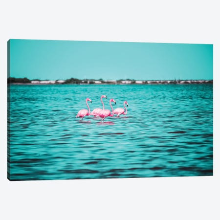 Pink Flamingos Canvas Print #GGV59} by A Carousel Wandering Canvas Print
