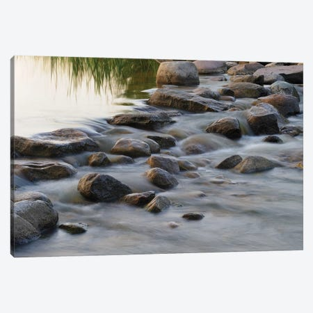Headwaters of the Mississippi River, Itasca, Minnesota Canvas Print #GHA3} by Gayle Harper Art Print
