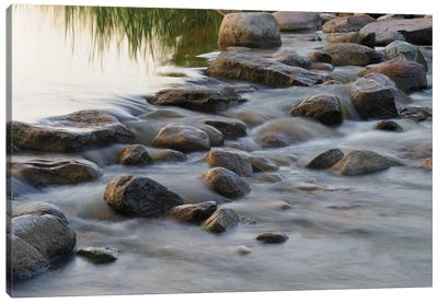 Headwaters of the Mississippi River, Itasca, Minnesota Canvas Art Print