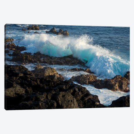 Huge waves crashing against lava rocks on coast of Big Island, Hawaii Canvas Print #GHA4} by Gayle Harper Canvas Art