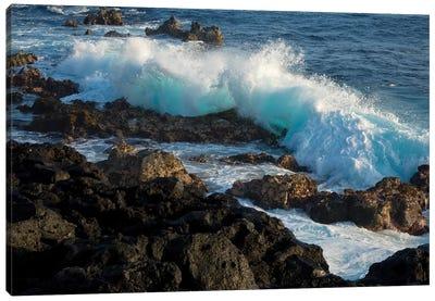 Huge waves crashing against lava rocks on coast of Big Island, Hawaii Canvas Art Print