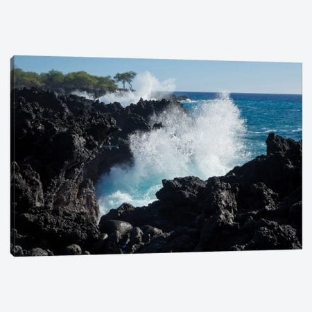 Huge waves crashing against lava rocks on coast of Big Island, Hawaii Canvas Print #GHA5} by Gayle Harper Canvas Artwork