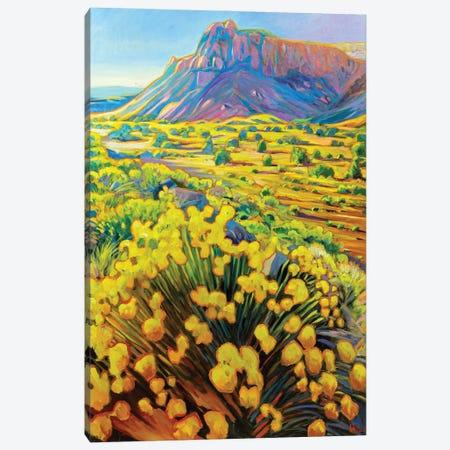 Ghost Ranch Canvas Print #GHE18} by Greg Heil Canvas Wall Art