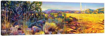 Abquiu Canvas Art Print