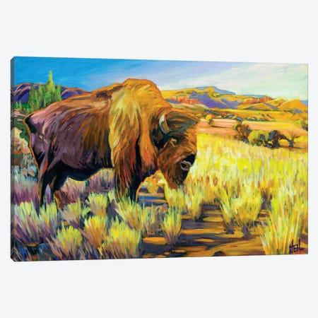 Lone Buffalo Canvas Print #GHE24} by Greg Heil Canvas Wall Art