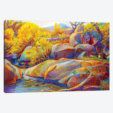 Oak Creek Fall Canvas Print #GHE28} by Greg Heil Canvas Print