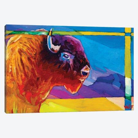 Rain Buffalo Canvas Print #GHE29} by Greg Heil Canvas Print