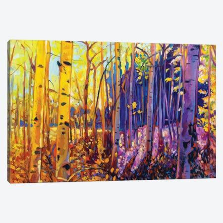 Autumn Aspens Canvas Print #GHE5} by Greg Heil Canvas Wall Art