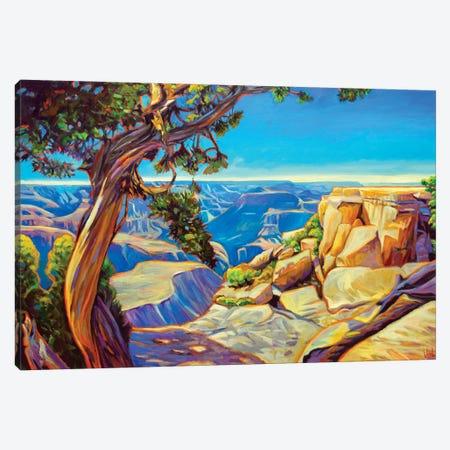 Canyon Through The Pinion Canvas Print #GHE8} by Greg Heil Art Print