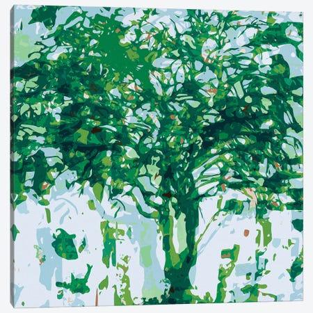 Green Blue Tree Canvas Print #GHL16} by George Hall Canvas Artwork