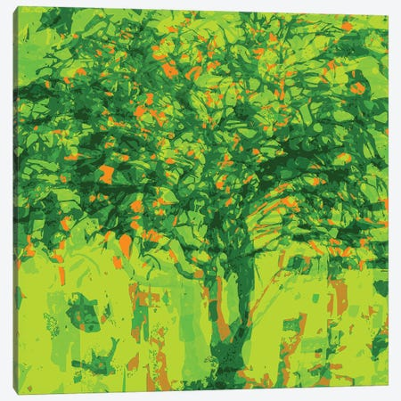 Lime Tree Canvas Print #GHL17} by George Hall Canvas Wall Art