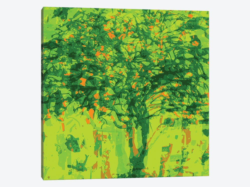 Lime Tree by George Hall 1-piece Canvas Artwork