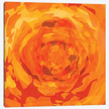 Orange Rose Canvas Print #GHL78} by George Hall Canvas Print