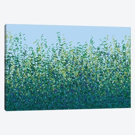 Free Rhythm Canvas Print #GHL90} by George Hall Canvas Art Print