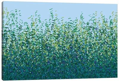 Free Rhythm Canvas Art Print