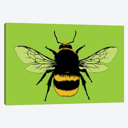 Bee Mine - Lime Canvas Print #GHO105} by Gary Hogben Canvas Art
