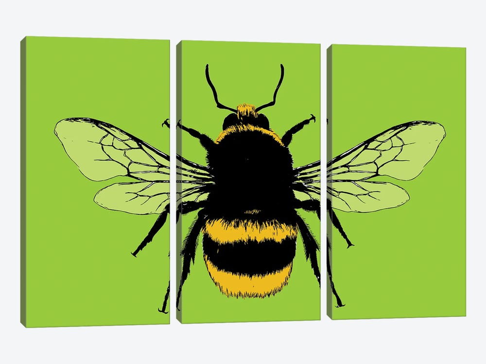 Bee Mine - Lime by Gary Hogben 3-piece Art Print