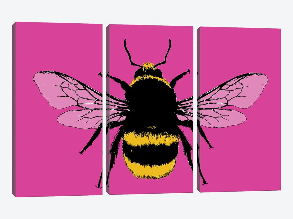 Bee Mine - Pink by Gary Hogben 3-piece Canvas Print