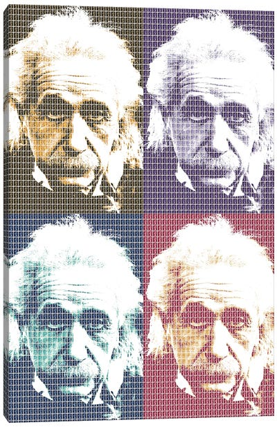 Einstein X 4 Canvas Art Print