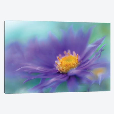 Gold & Purple in the Mist V Canvas Print #GIH13} by Gillian Hunt Canvas Art