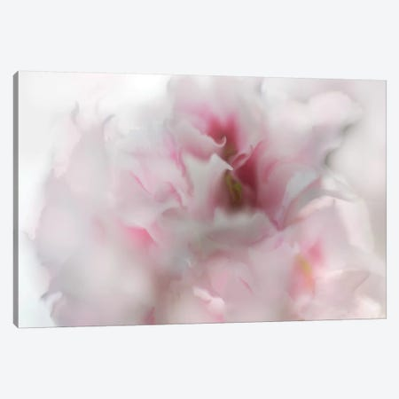 Hope in Pink I Canvas Print #GIH14} by Gillian Hunt Art Print