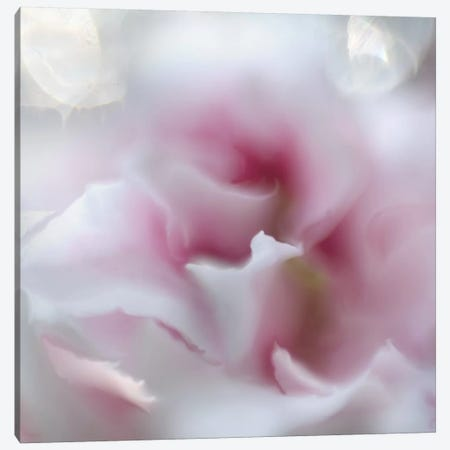 Hope in Pink III Canvas Print #GIH16} by Gillian Hunt Canvas Print