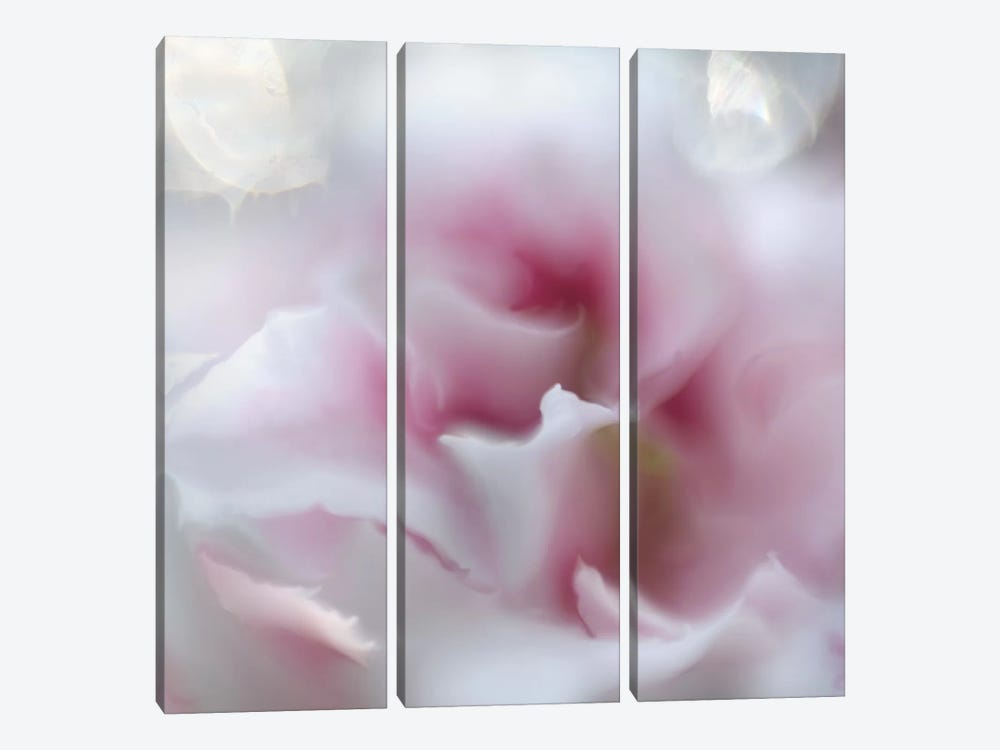 Hope in Pink III by Gillian Hunt 3-piece Canvas Art
