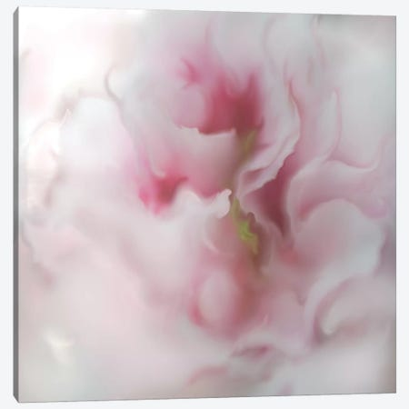 Hope in Pink IV Canvas Print #GIH17} by Gillian Hunt Canvas Print