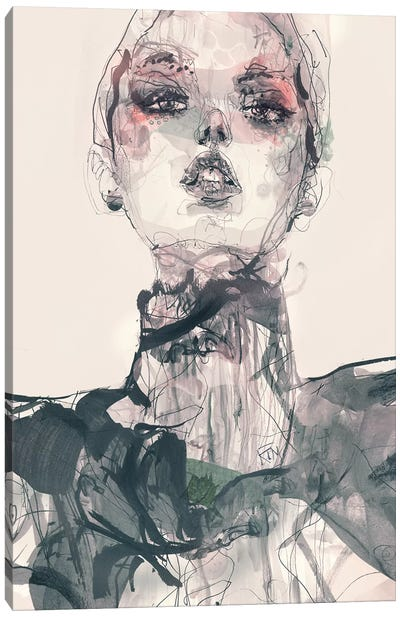 Dragos Canvas Art Print