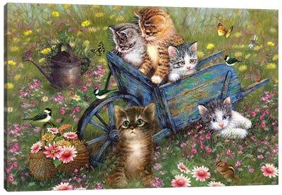 Wheelbarrow Kitties Canvas Art Print