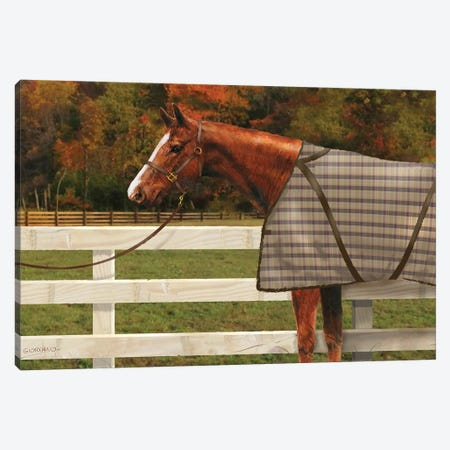 Chestnut In The Field Canvas Print #GIO111} by Giordano Studios Canvas Wall Art