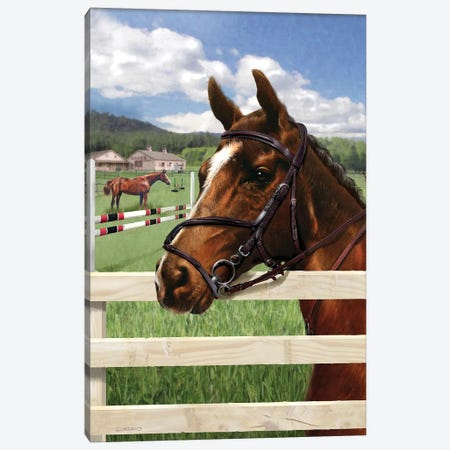 Fella At The Fence Canvas Print #GIO113} by Giordano Studios Canvas Art
