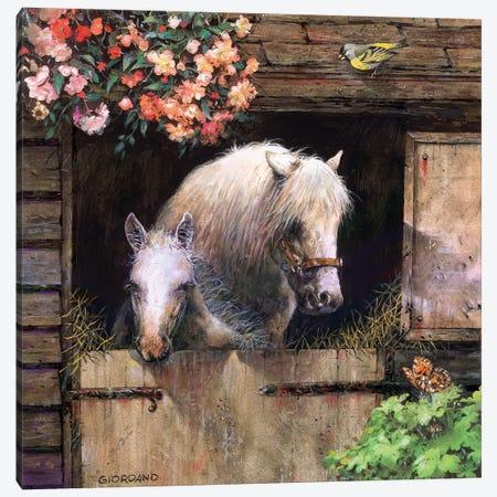 Inside The Barn Canvas Print #GIO117} by Giordano Studios Canvas Art Print