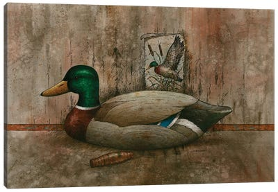 Mallard In Dimension Canvas Art Print