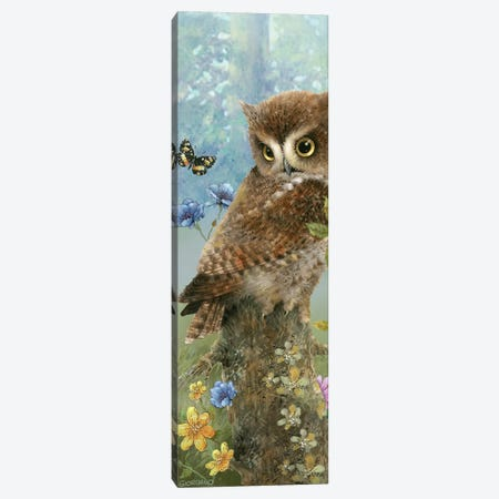 Owl In The Meadow Canvas Print #GIO151} by Giordano Studios Canvas Wall Art