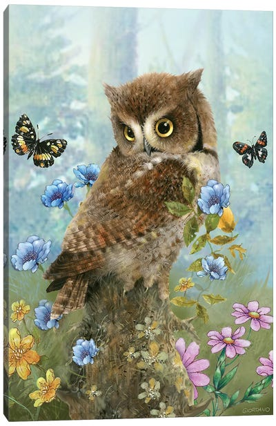 Owl In The Meadow Canvas Art Print