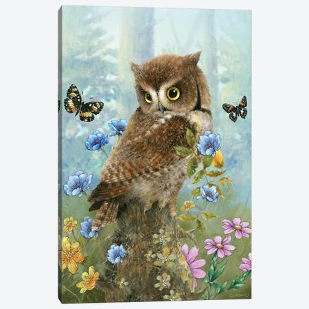 Owl In The Meadow Canvas Print #GIO152} by Giordano Studios Canvas Artwork