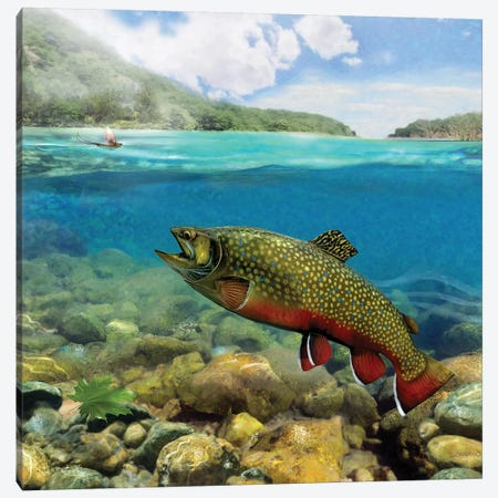 Brookie On The Riffle Canvas Print #GIO159} by Giordano Studios Canvas Wall Art