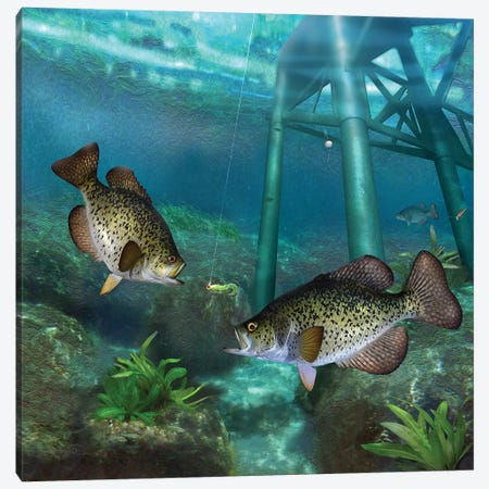 Crappies At The Old Steel Pier Canvas Print #GIO161} by Giordano Studios Canvas Print