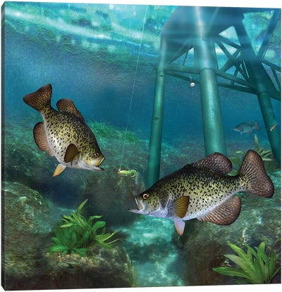 Crappies At The Old Steel Pier Canvas Art Print