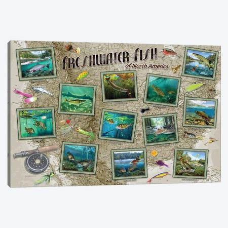 Fish Of North America Canvas Print #GIO168} by Giordano Studios Canvas Art Print